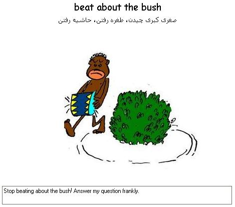 beat-about-the-bush